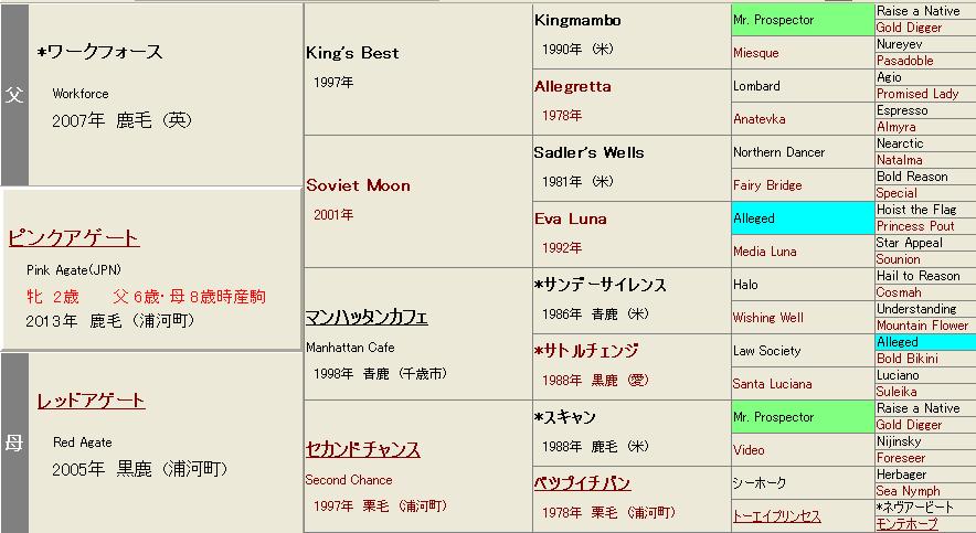 ピンクアゲート血統